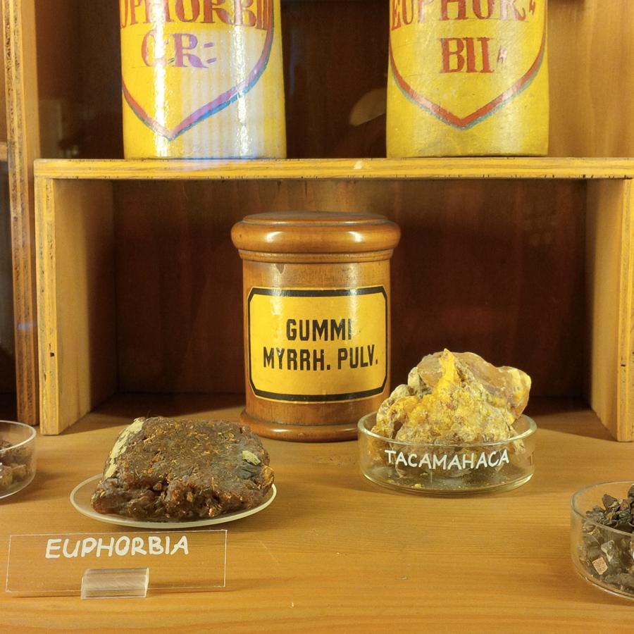 Deutschen Apotheken Museum